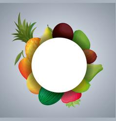 frame circular with fresh fruits vector image