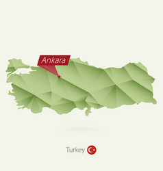 Green gradient low poly map turkey vector