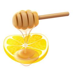 Honey lemon vector