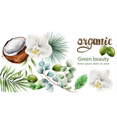 Organic products composition vector