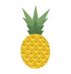 Pineapple on the white vector