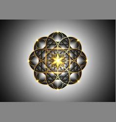 seed life symbol sacred geometry gold luxury vector image