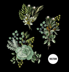 Set of greenery leaves and succulent vector