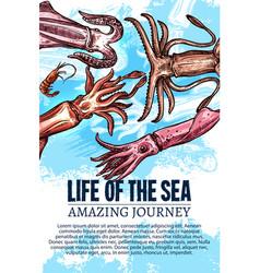 Sea life poster of undewater sketch animals vector