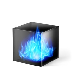 Cube with fire flames vector image