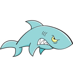 Cartoon angry shark vector