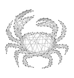 crab animal sea seafood from abstract futuristic vector image