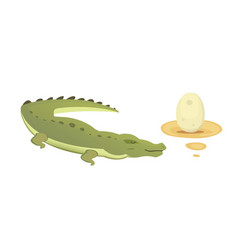 Cute crocodile set aligator cartoon vector