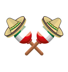 pair mexican maraca instrument with traditional vector image