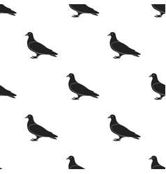pigeon icon in black style isolated on white vector image