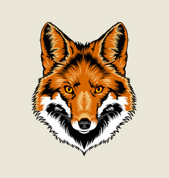 Red Fox Head vector