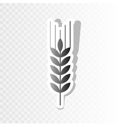 Wheat sign spike spica new vector