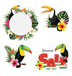 toucans set vector image