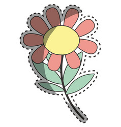 Beauty flower plant with petals and leaves vector
