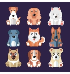 breeds dogs icons vector image
