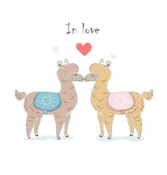 Cute alpaca couple for valentines day and love vector