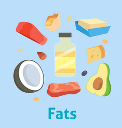 Fat food healthy diet oil avocado or fatty vector