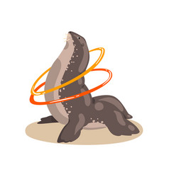 Fur seal twisting hula hoop sea animal performing vector