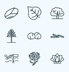 Harmony icons line style set with pine chickpeas vector