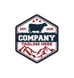 modern badge angus cow and farm logo vector image