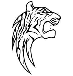 rising tiger head vector image