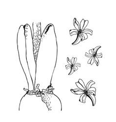 Set of hand drawn line art bulb pot flowers vector