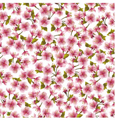 seamless background with pink sakura blossom vector image
