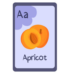 Abc flashcard letter a for apricot vector