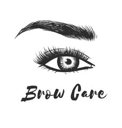 Beauty care beautiful hand drawing eyebrows for vector