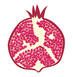 Flat design icon of pomegranate in ui colors vector