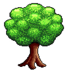 pixel big tree isolated vector image