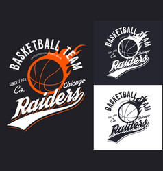 Set of isolated basketball logo for chicago team vector