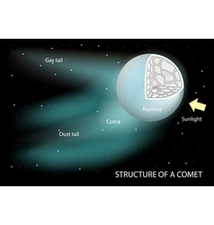 structure of a comet vector image