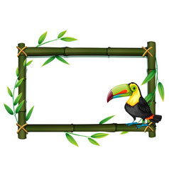 toucan on bamboo border vector image