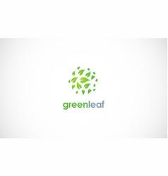 green leaf round logo vector image