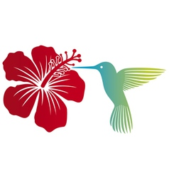 hummingbird and red hibiscus flower vector image vector image