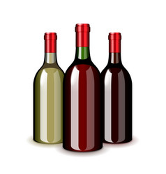 three wine bottles isolated on white vector image
