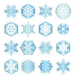 Collection of 16 blue snowflakes on white vector