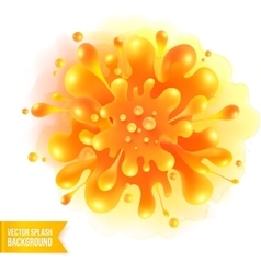 Orange paint splash on watercolor vector image vector image