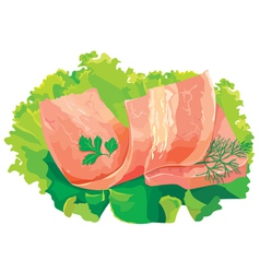meat with salad vector image vector image