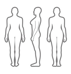 naked standing woman silhouette vector image vector image