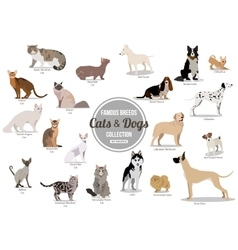 Set of flat sitting or walking cute cartoon dogs vector image