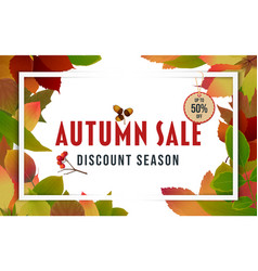 Autumn sale banner design with discount label 02 vector