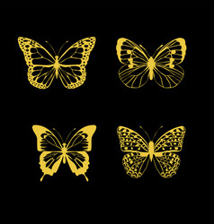 Butterfly gold vector