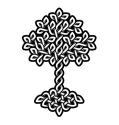 Celtic tree life monochrome weaved ornament vector
