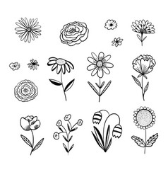 collection outline black floral elements vector image