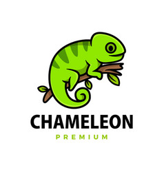 cute chameleon cartoon logo icon vector image