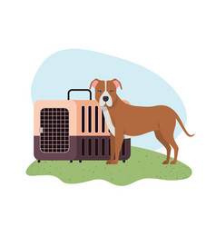Dog and pet transport box with background vector