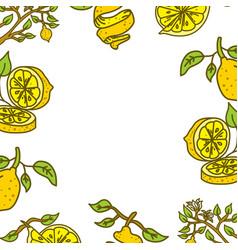 lemon fruit frame empty template vector image