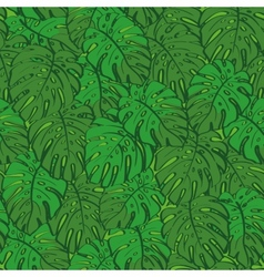 Seamless background monstera green leaves vector image